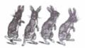 Rabbitsblog